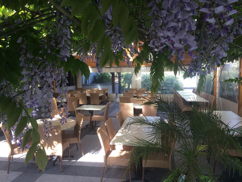 LA TERRASSE - Restaurant Aux Trois Fleurs à Montreux-Jeune