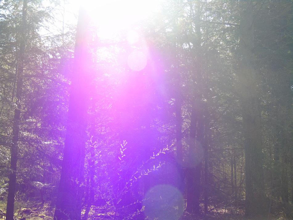 Lichtkugeln fallen auf die Erde hinab, um alles Leben energetisch anzuheben, Violette Transformationsenergie, Quelle: www.lichtwesenfotografie.com