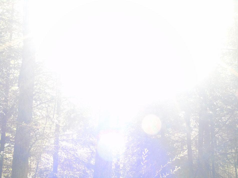 Einklang - Verschmelzen mit der göttlichen Quelle, Quelle: www.lichtwesenfotografie.com