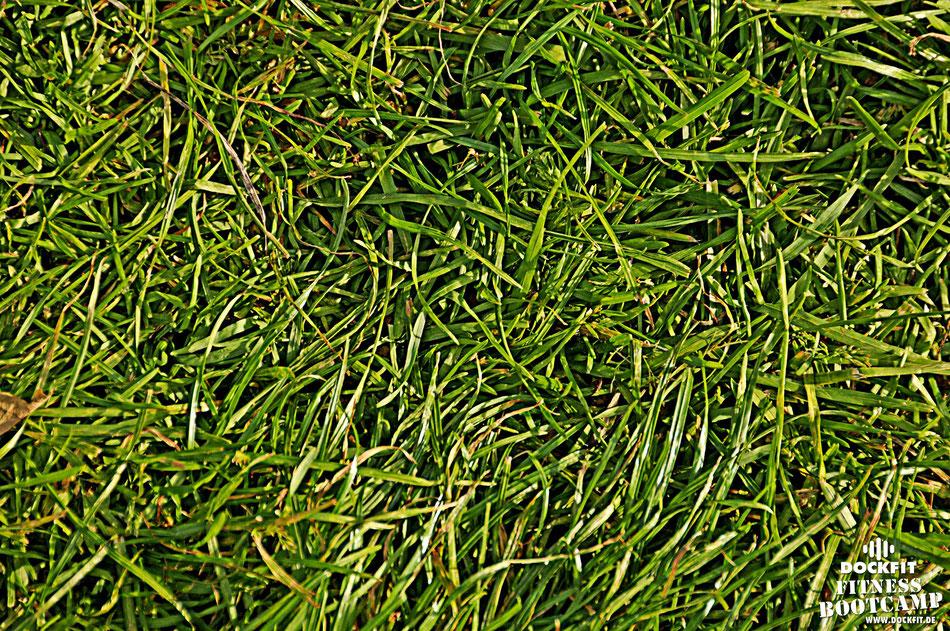 Gewitter dockfit altona fitness Personal-Trainer bootcamp hamburg training fitnessexperten hamburg dockland battle ropes outdoor training Burpees overhead  2017 abnehmen Gewichtsreduktion outdoor Montag Mittwoch Altonaer-Balkon Sixpack