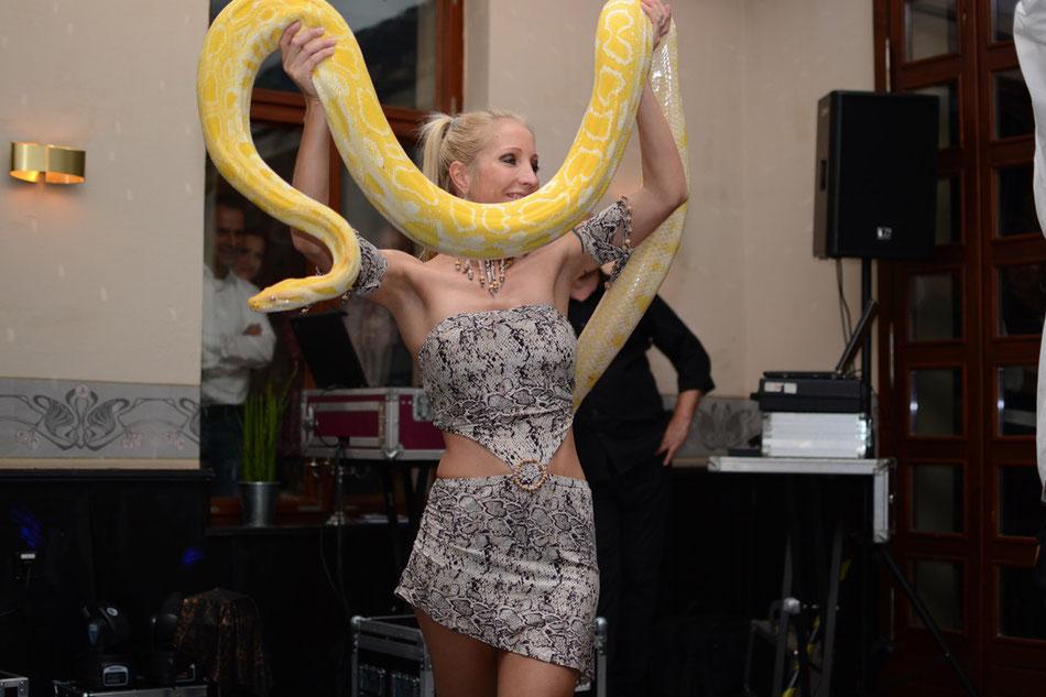 Schlangenshow Berlin