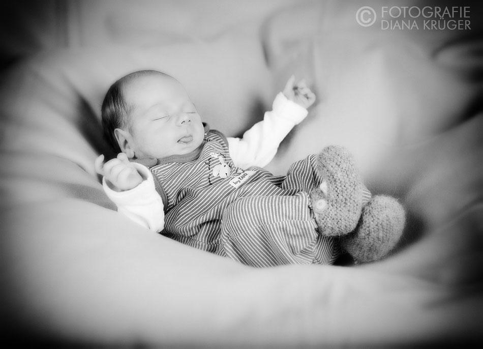 Babyfotos Diana Krüger