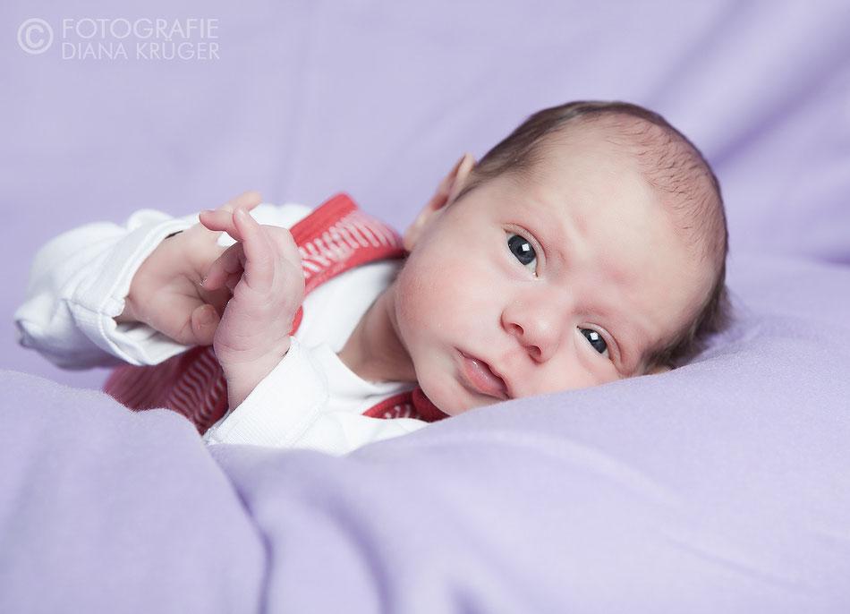 Newbornshooting Diana Krüger