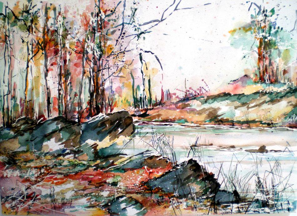 100 Sous bois - 2008 - Aquarelle 50 x 70