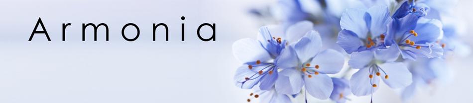 Sheabutter Schweiz Armonia Shop Für Naturkosmetik