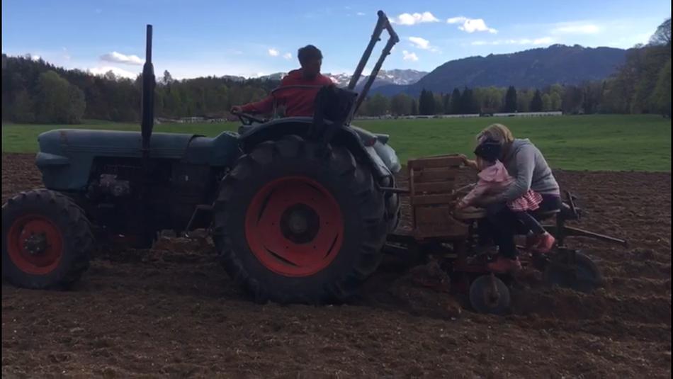 Kartoffeln legen im April 2019