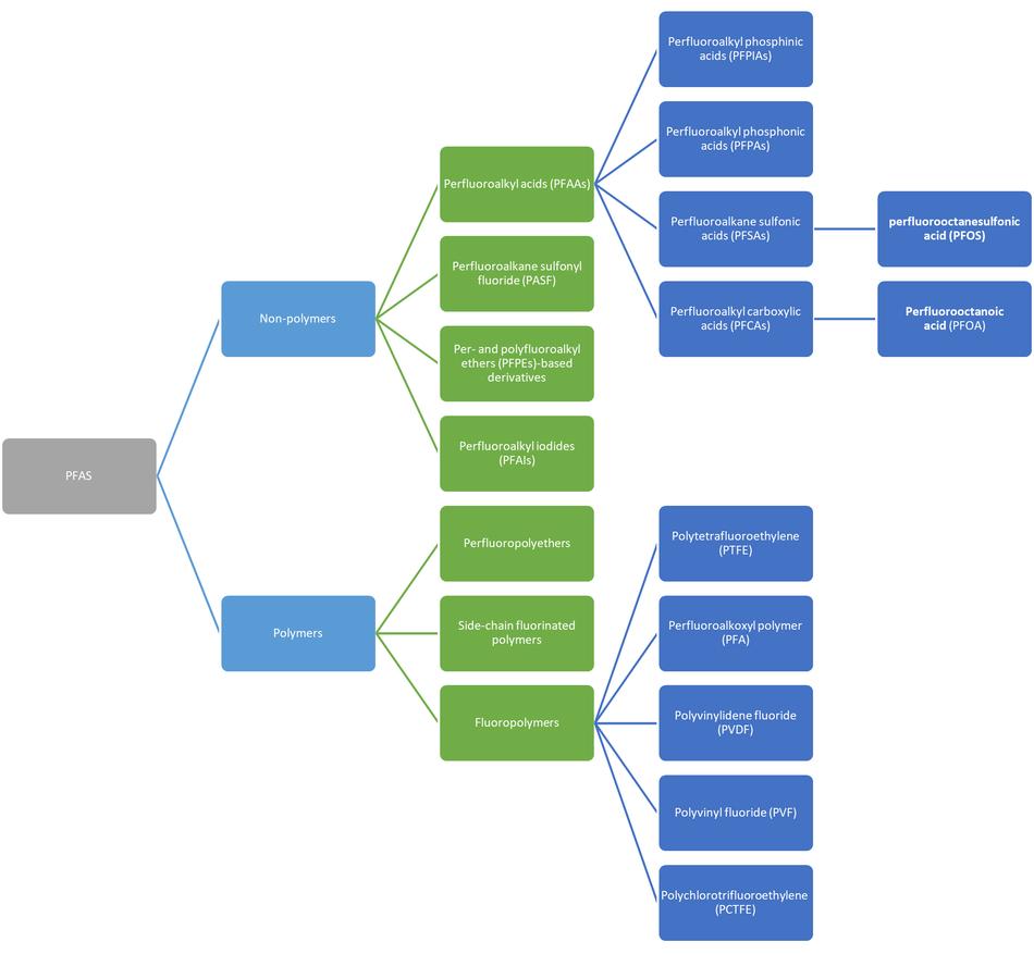 Tree diagram of the PFAS Group