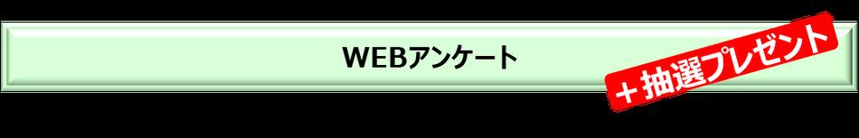 WEBアンケート+抽選プレゼント