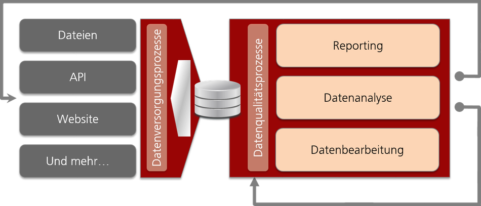 Datenversorgungsprozesse, Datenqualitätsprozesse, Reporting, Datenanalyse, Datenbearbeitung
