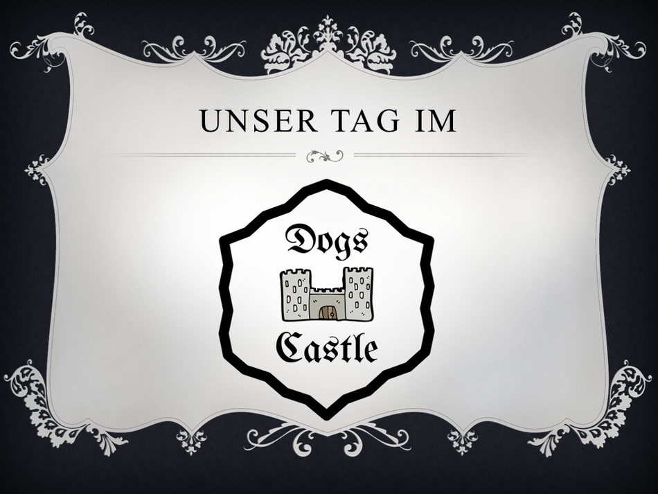 Unser Tag im Dogs Castle Hundetagesstätte Leibstadt Aargau Hundesitter
