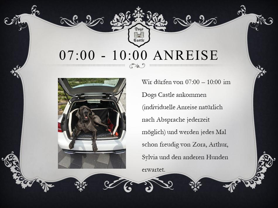 Anreise: Wir dürfen von 07:00 – 10:00 im  Dogs Castle Hundetagesstätte ankommen (individuelle Anreise natürlich nach Absprache jederzeit möglich) und werden jedes Mal schon freudig in Leibstadt erwartet. Hundesitter