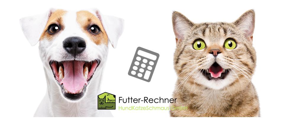 Futterrechner für Katzen