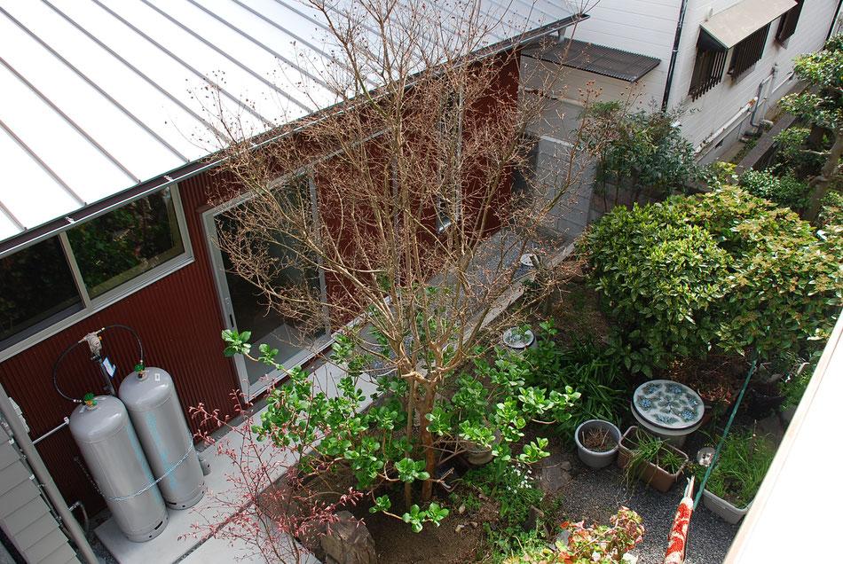 ワインレッドの板金に庭の緑が映えます。