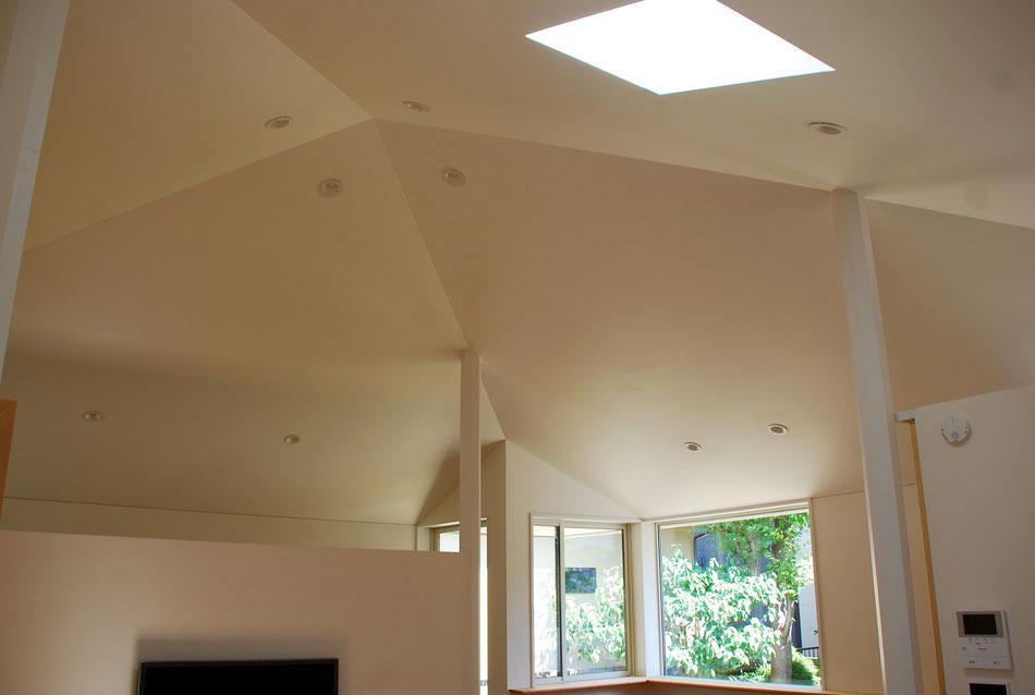 程よい天井懐の拡がりと暗がりが、この住宅の包容力なのではないかと考える。