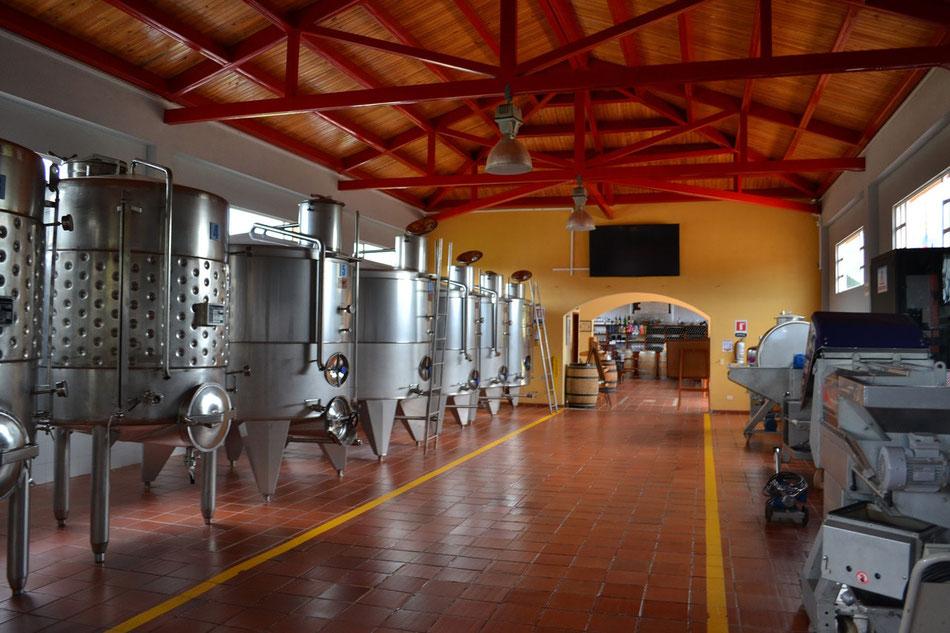 Cuve pour vendange vins bordelais