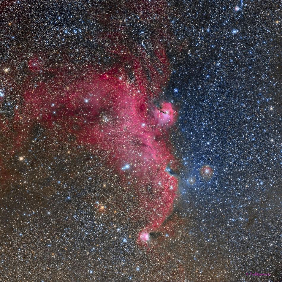 Nebulosa de la Gaviota (IC2177)