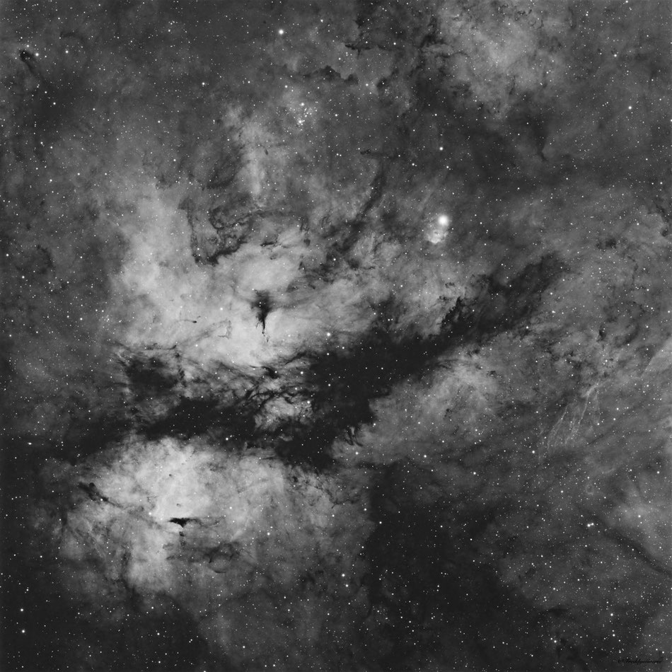 Nebulosa de La Mariposa IC1318