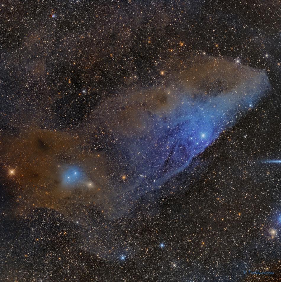 IC4592 - IC4601 Nebulosa de Cabeza de Caballo Azul
