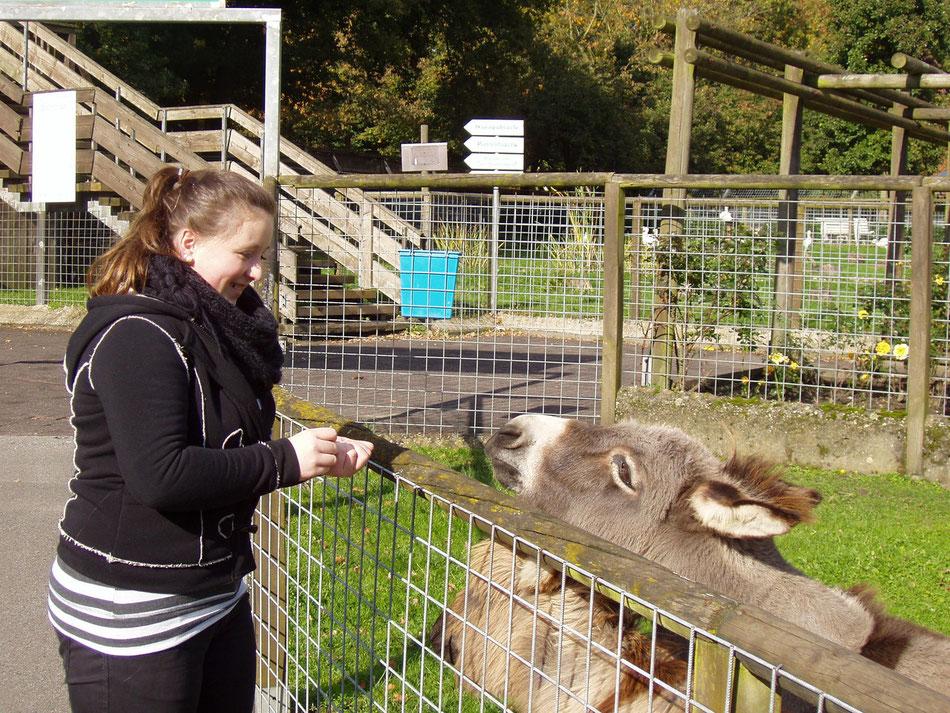 Laura und ihr Esel