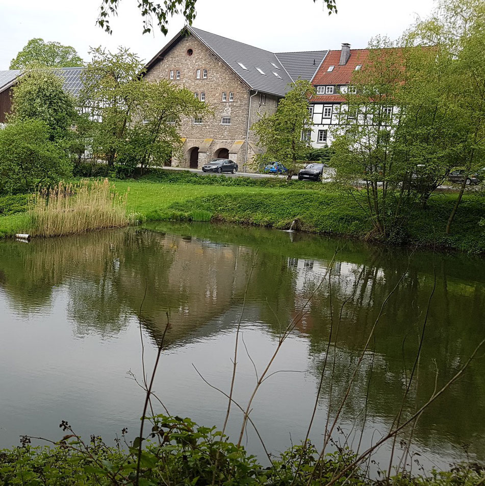 sauerland, rundwanderung, wanderung, wandern, arnsberg, gut, wintrop, outdoor