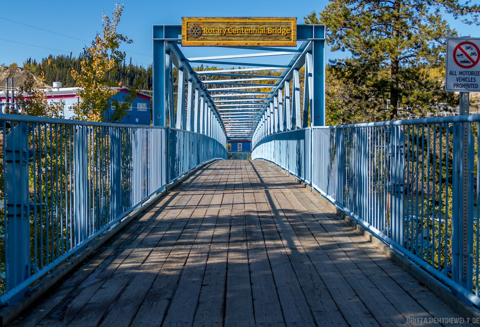 rotarycentennialbridge, whitehorse, yukon, kanada, roadtrip, wanderung, milleniumtrail, herbst, selbstfahrer, wohnmobil