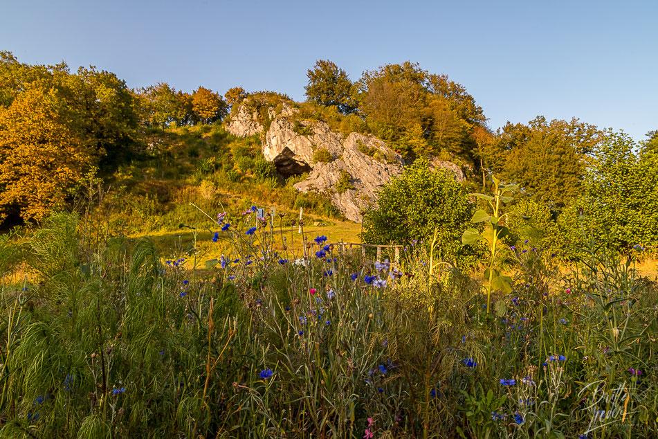 sauerland, hohler stein, höhle, kallenhardt, wandern, wanderung, hiking, wanderroute, karte, tipps, infos