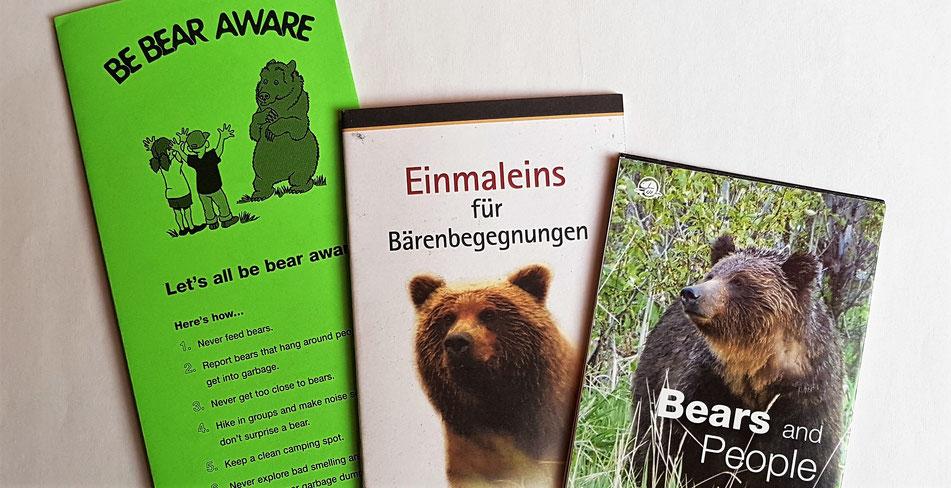 grizzly, bär, bärenbegegnung, wohnmobil, kanada, roadtrip, berge, natur, fotografieren, reisen, tipps