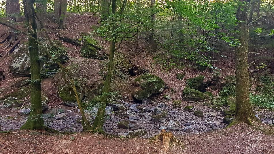 sauerland, bachschwinde, lörmecke, bach, kallenhardt, wandern, wanderung, hiking, wanderroute, karte, tipps, infos