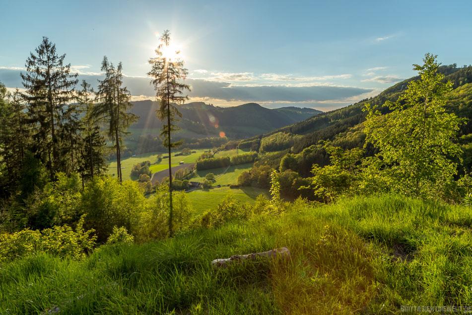sauerland, naturpark, homert, wennetal, wenholthausen, oesterberge, hiking