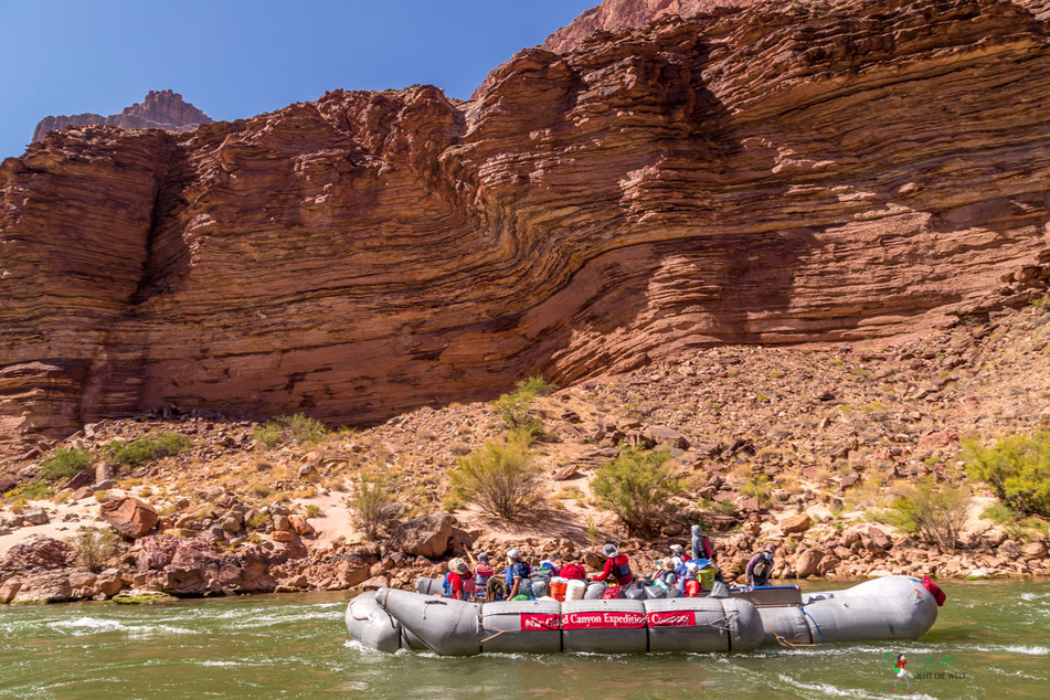 gesteinsschicht, tapeats, grand canyon, rafting, expedition, gcex, colorado, river, abenteuer, schlauchboot, landschaft