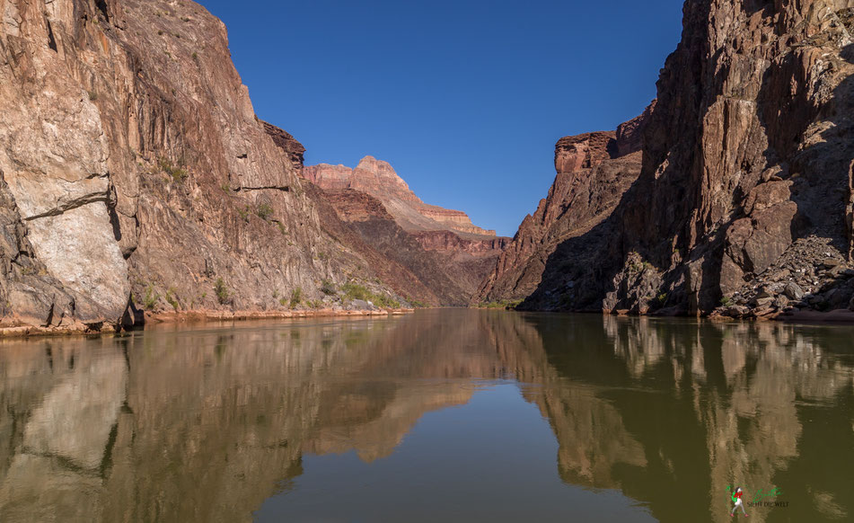 grand canyon, rafting, expedition, gcex, camp, trinity, creek, colorado, river, abenteuer, schlauchboot, spiegelung