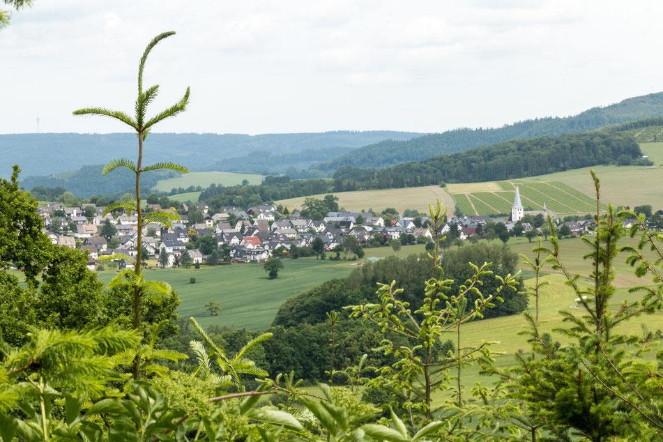 remblinghausen, sauerland, wanderung, rundwanderung, goldener, strauch, aussicht, ginster, blühender