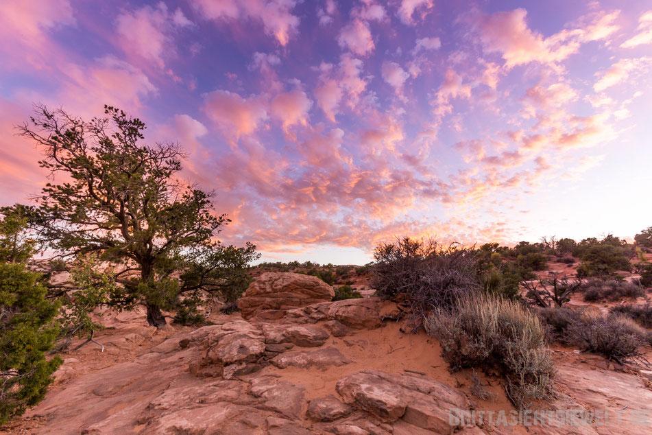 mesaarch,mesa,arch,sunset,canyonlands, islandinthesky, nationalpark,utah,usa, tipps, wandern, wandertipps,jucy