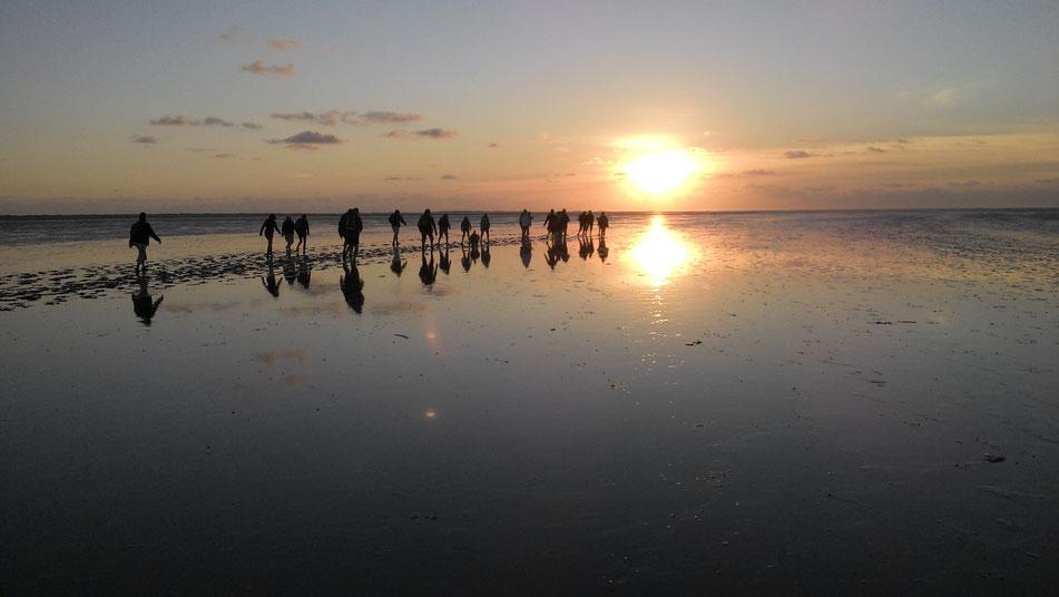 Wattwanderung bei Sonnenaufgang!