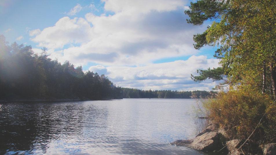 suède lac parc forêt barque