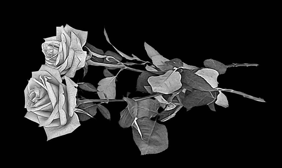 Розы для гравировки