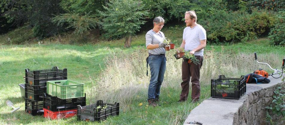 Silvana Eger und Erik Kubitz bei der Auspflanzaktion im Heynitzer Schlosspark, Foto: Eike von Watzdorf