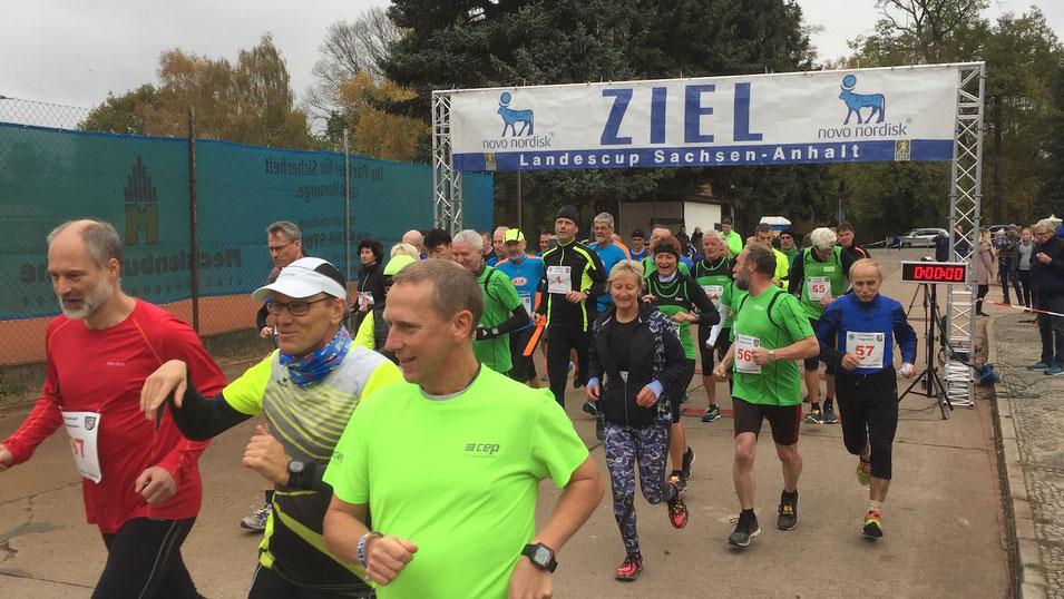 Kurz nach dem Start des 10-Kilometer-Laufs in Tangerhütte. Foto: Alpha-Report