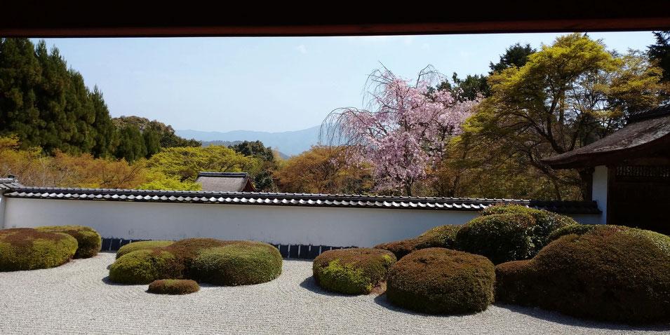 比叡山借景の西賀茂正伝院 デビットボウイもこの美しさに涙したお寺です。京都観光タクシー 永田二信明