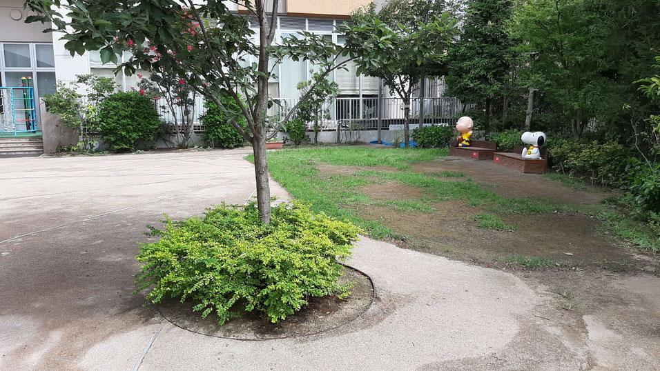 社会福祉法人S・Kこども園の園庭
