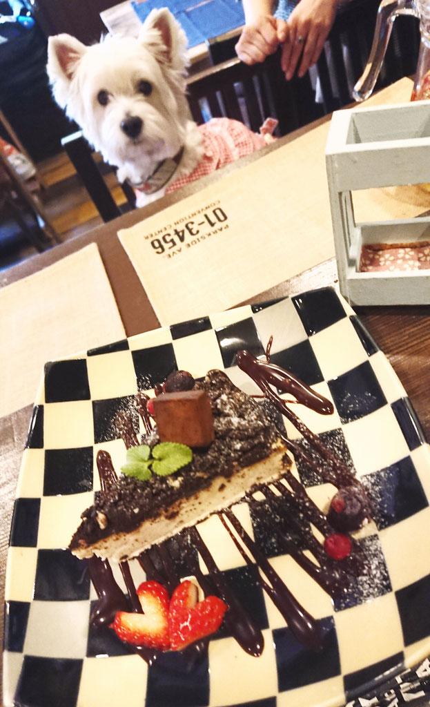 NYクッキー&クリームチーズケーキ