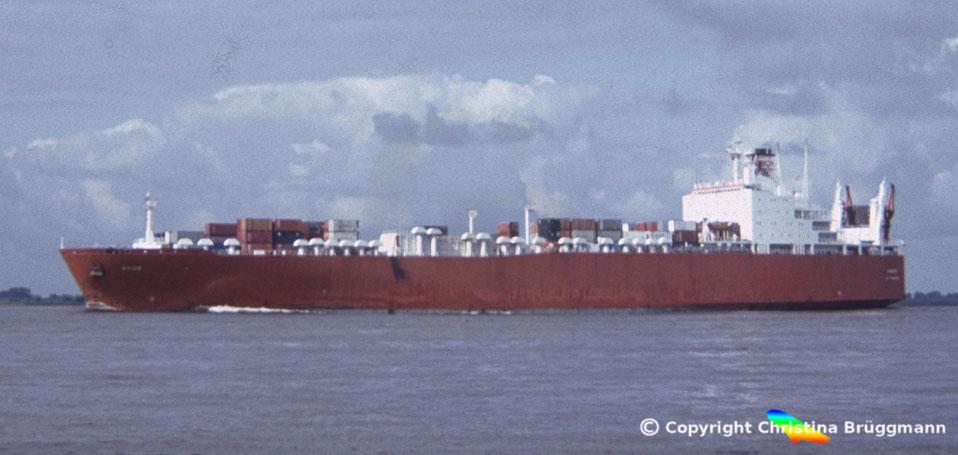 Con-Ro Schiff ANGO, Elbe 1986