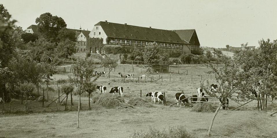 Gutshof Steiger in Mauna 1937, Foto: SLUB/Deutsche Fotothek, unbekannt
