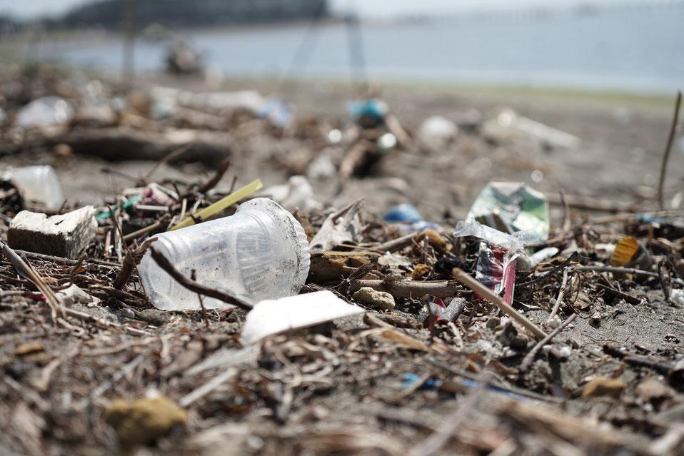Problem Strohhalme am Strand und im Meer