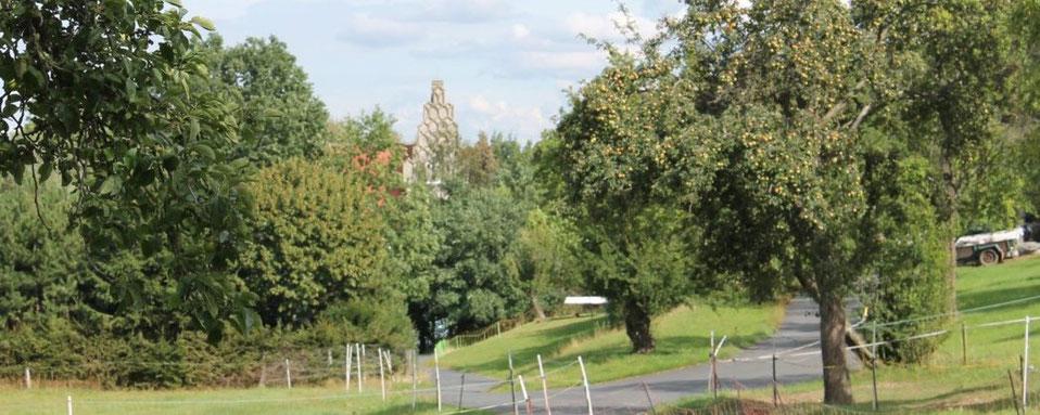 Reife Apfelbäume und Schlossgiebel in Heynitz, 2020, Foto: EvW