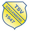 Homepage TSV Collenberg