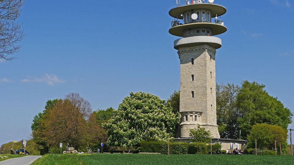 Die Baumberge-Kommunen möchten sich erneut als LEADER-Region bewerben.