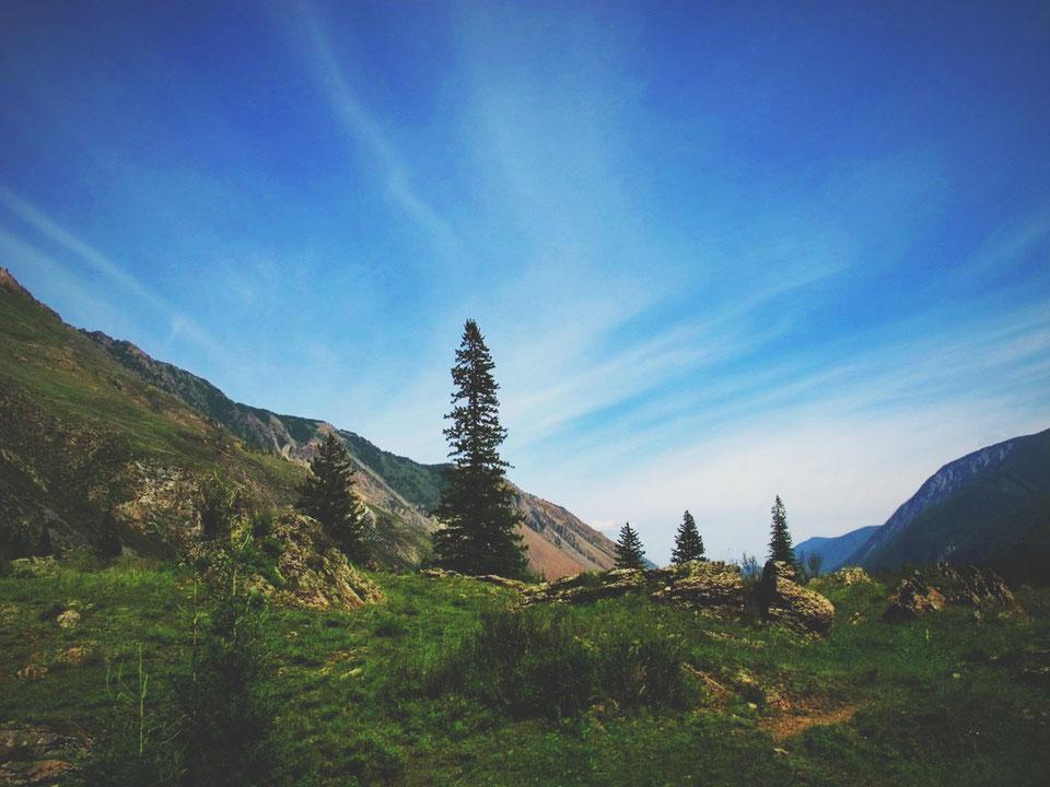 bigousteppes russie republique altai montagne route forets