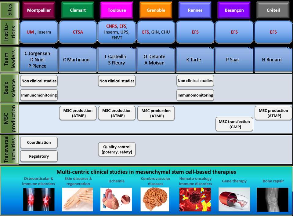 plateformes ECELLFRANCE de recherche thérapies cellulaires