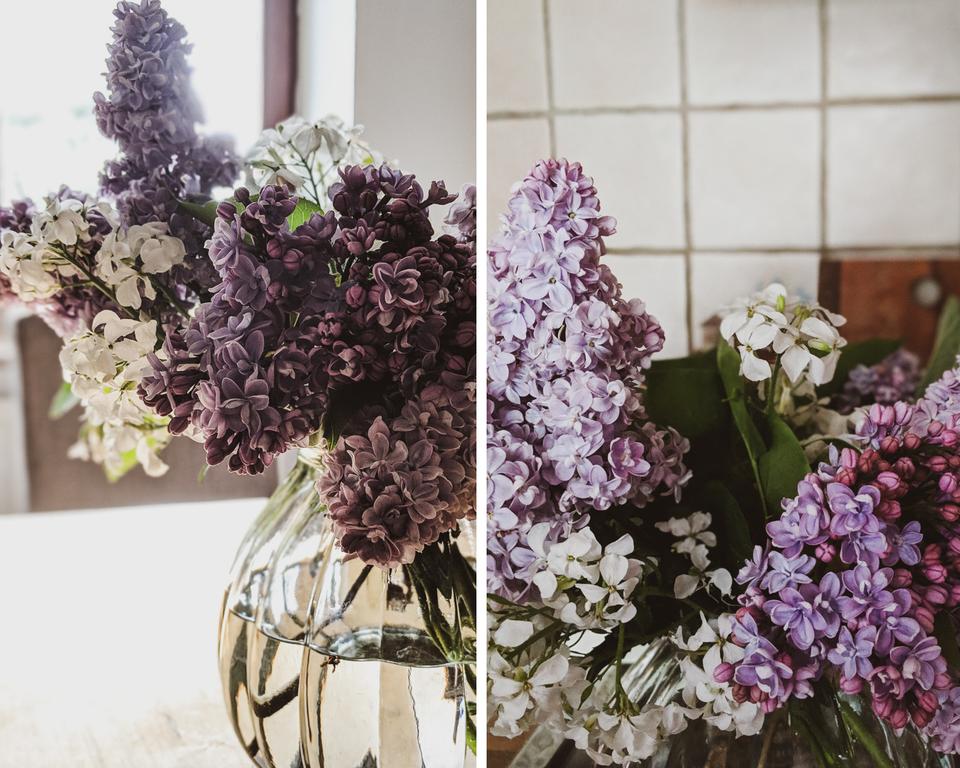 Flieder aus dem Garten ist auch in der Vase schön